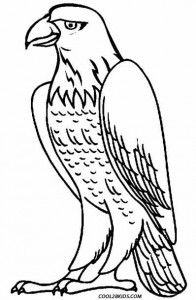 coloring book kander ebb free printable bald eagle coloring pages for kids bird book coloring kander ebb