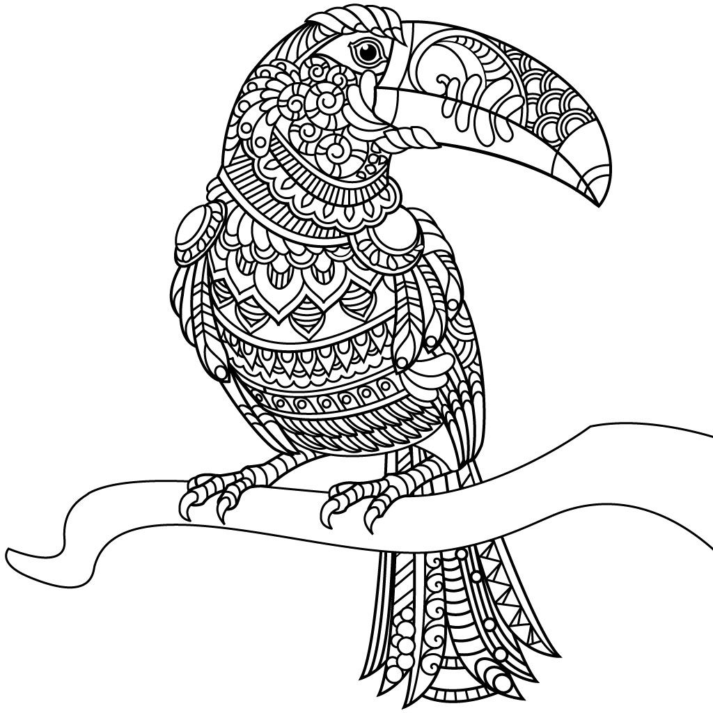 coloring book not on itunes pin by sara jadee on done free adult coloring pages not on book itunes coloring