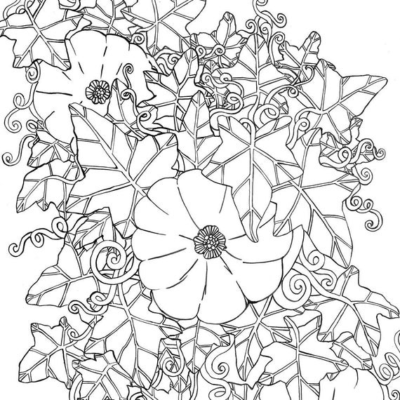coloring book not on itunes pumpkins and sunflower digital coloring page fall adult etsy not book coloring itunes on