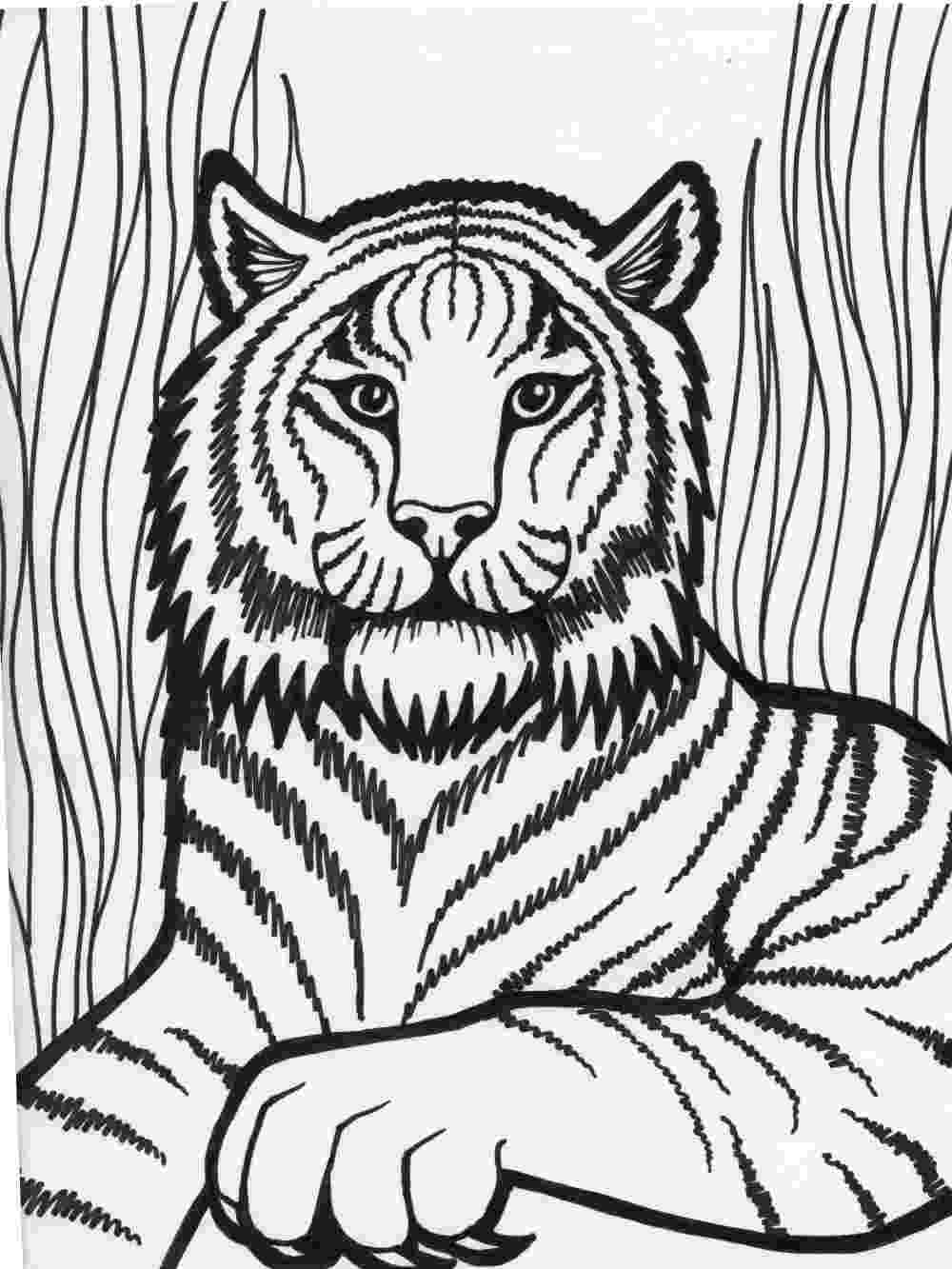coloring book tiger free printable tiger coloring pages for kids tiger book coloring