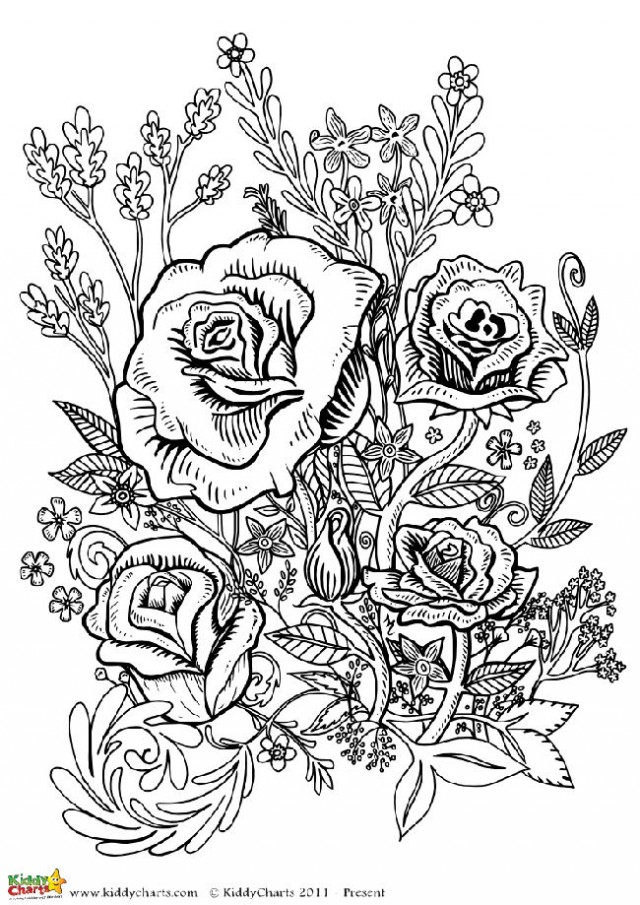 coloring books for adults flowers 7 floral adult coloring pages the graphics fairy books for coloring flowers adults