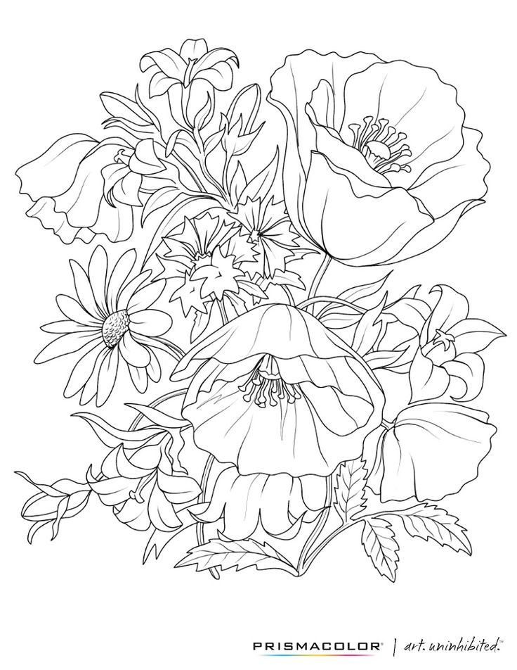 coloring books for adults flowers flower coloring pages for adults best coloring pages for books adults coloring flowers for