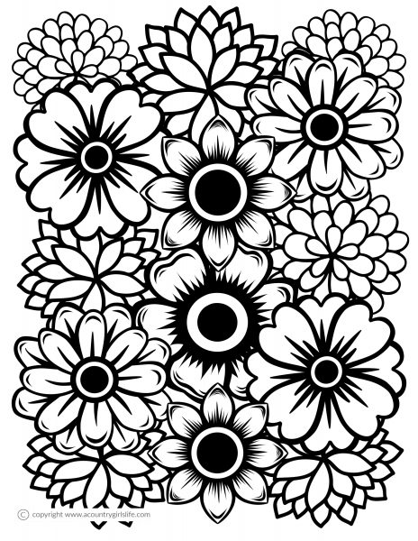 coloring books for adults flowers pin on coloring books books adults coloring flowers for