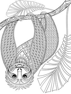 coloring books for adults kohls cute sloth in forest coloring page for adults kohls adults coloring books for