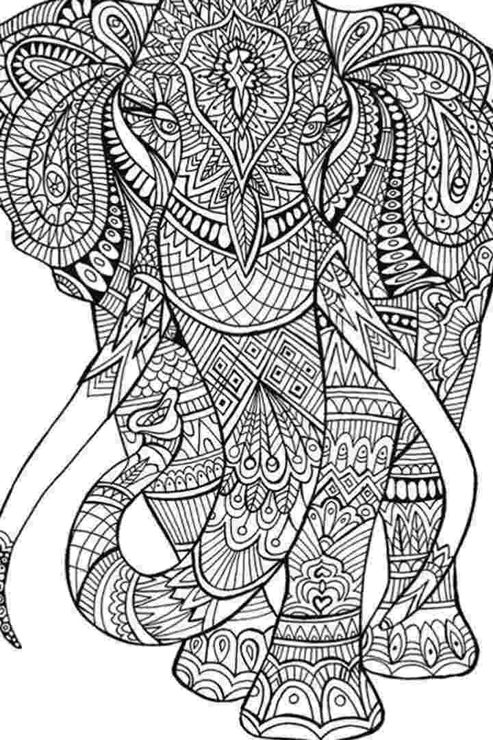 coloring for adults online free coloring for adults kleuren voor volwassenen owl online free coloring for adults