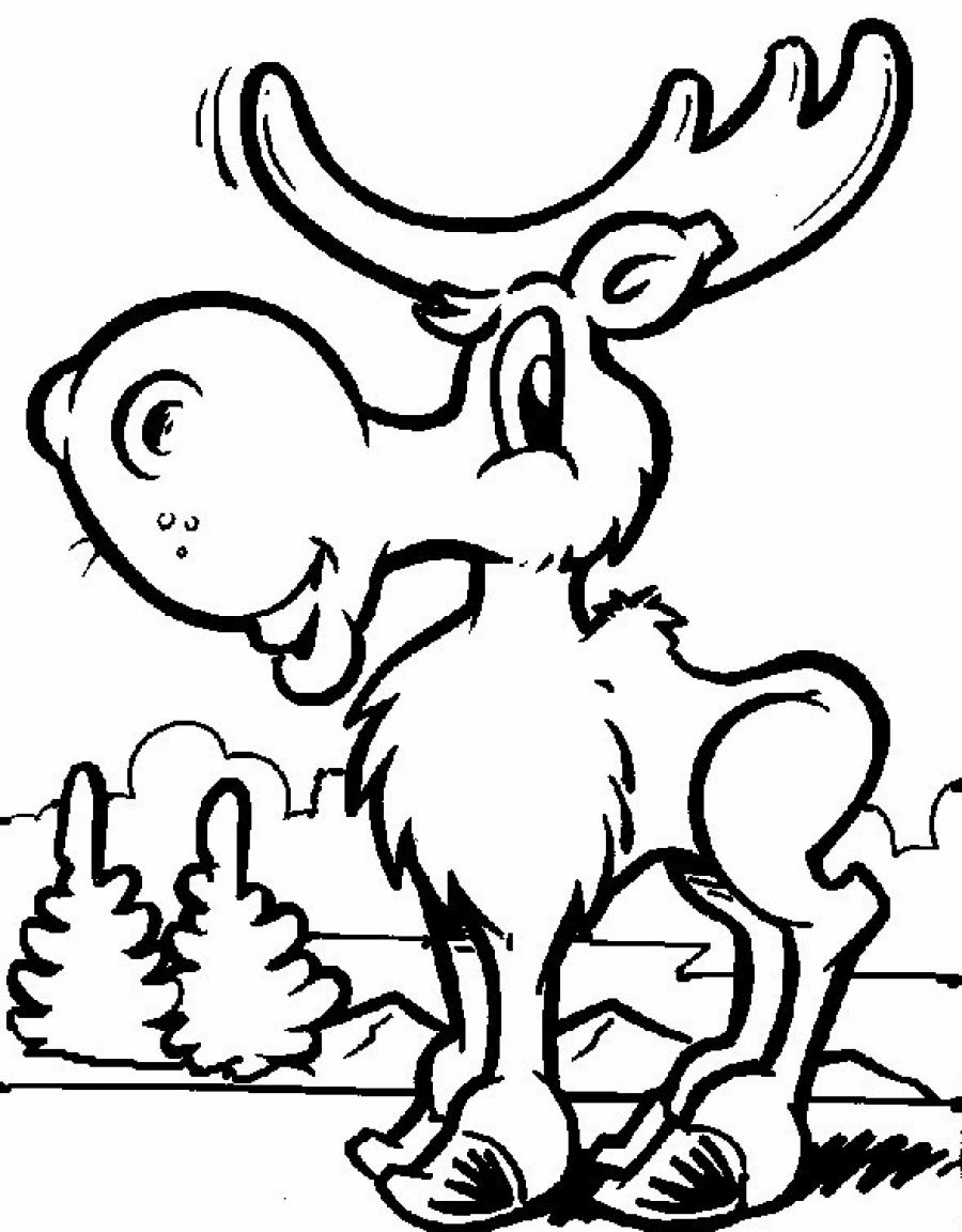 coloring page for kids free printable moose coloring pages for kids coloring kids page for