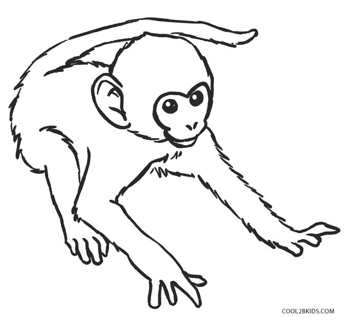 coloring page monkey monkey worksheets and coloring pages coloring monkey page