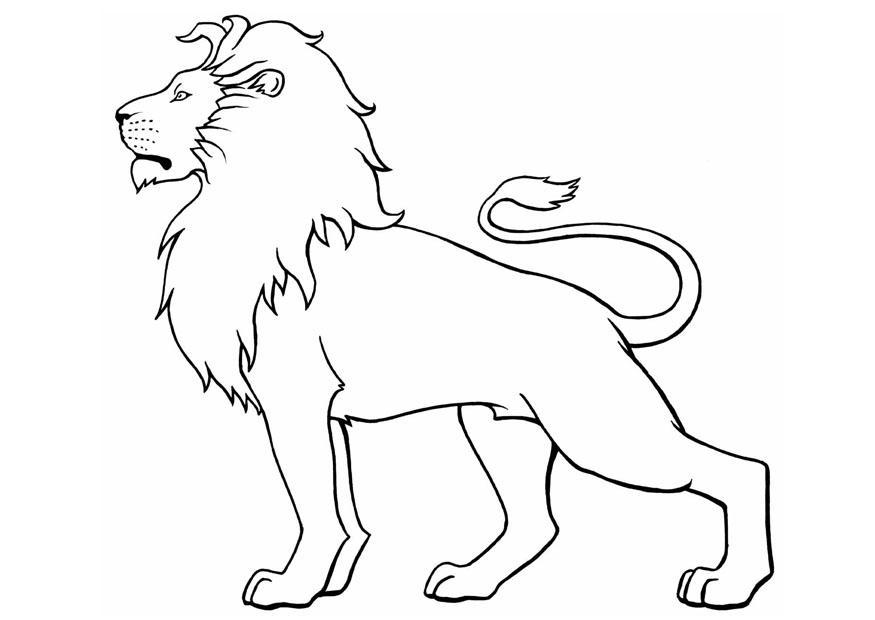 coloring page of a lion cartoon lion coloring pages getcoloringpagescom page coloring a of lion