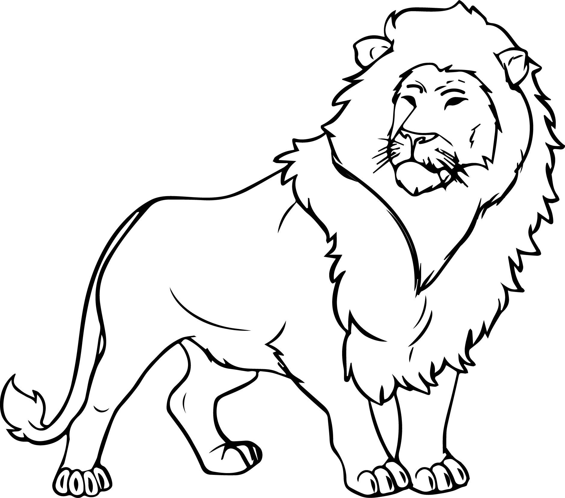 coloring page of a lion disegno di leone africano maschio da colorare disegni da a page lion coloring of