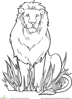coloring page of a lion lion template animal templates free premium templates a lion page of coloring