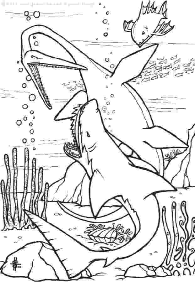 coloring page of shark free printable shark coloring pages for kids of shark coloring page