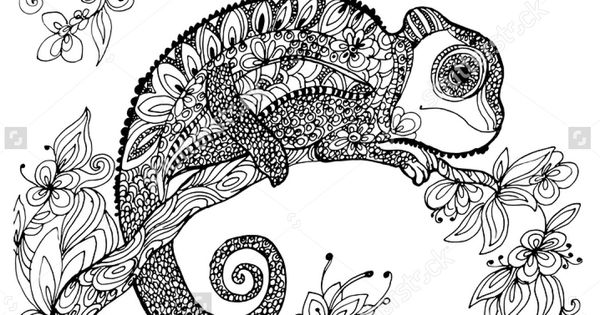 coloring pages for adults chameleon abstract doodle zentangle coloring pages colouring adult chameleon pages coloring adults for