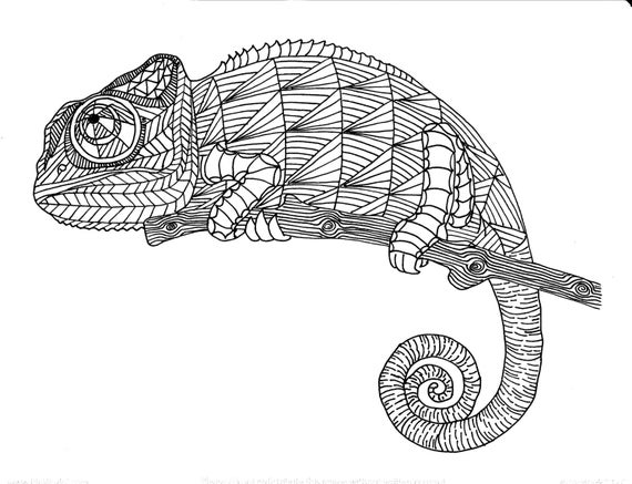 coloring pages for adults chameleon adult clip art vector images illustrations istock coloring pages chameleon for adults