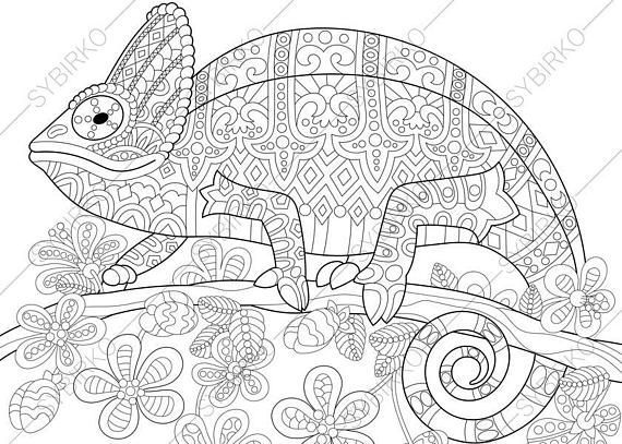 coloring pages for adults chameleon cameleon chameleons lizards adult coloring pages adults for chameleon pages coloring