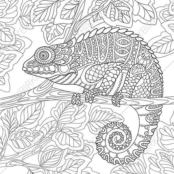 coloring pages for adults chameleon chameleon coloring page google search embroidery chameleon coloring for adults pages