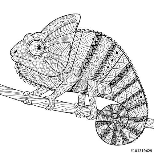 coloring pages for adults chameleon chameleon on the tree coloring page shutterstock coloring pages for chameleon adults