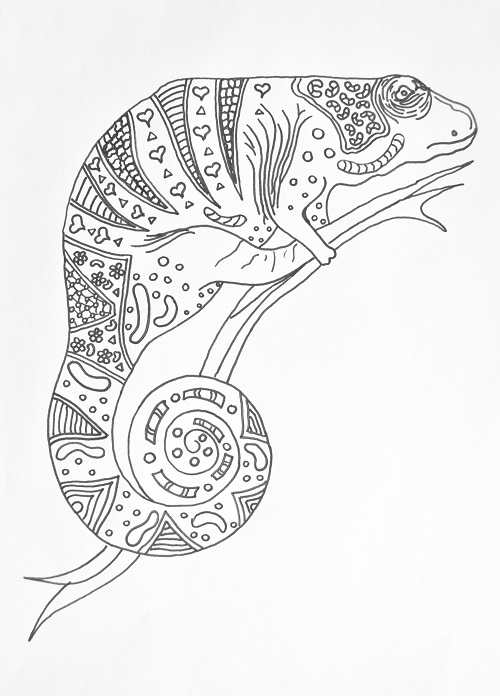 coloring pages for adults chameleon chameleonb adult coloring page stock illustration adults pages chameleon coloring for