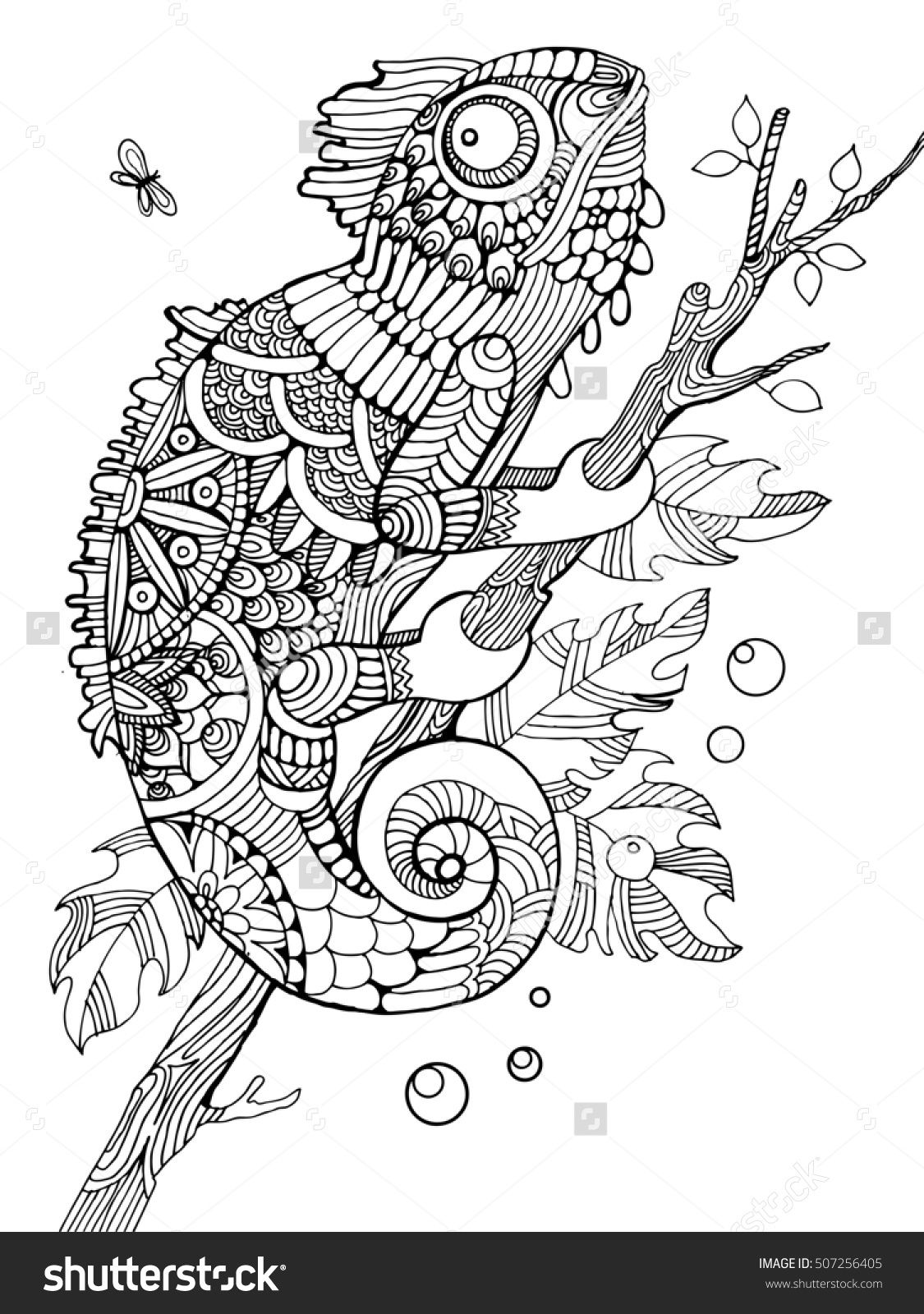 coloring pages for adults chameleon free book chameleon chameleons lizards adult coloring for pages adults coloring chameleon