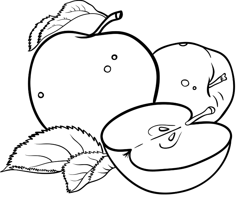 coloring pages for apples free printable apple coloring pages for kids pages for coloring apples