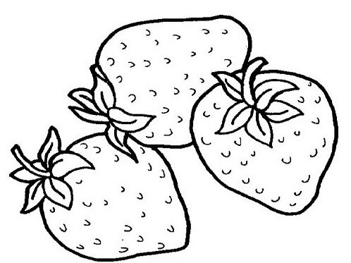 coloring pages fruit free printable fruit coloring pages for kids coloring fruit pages