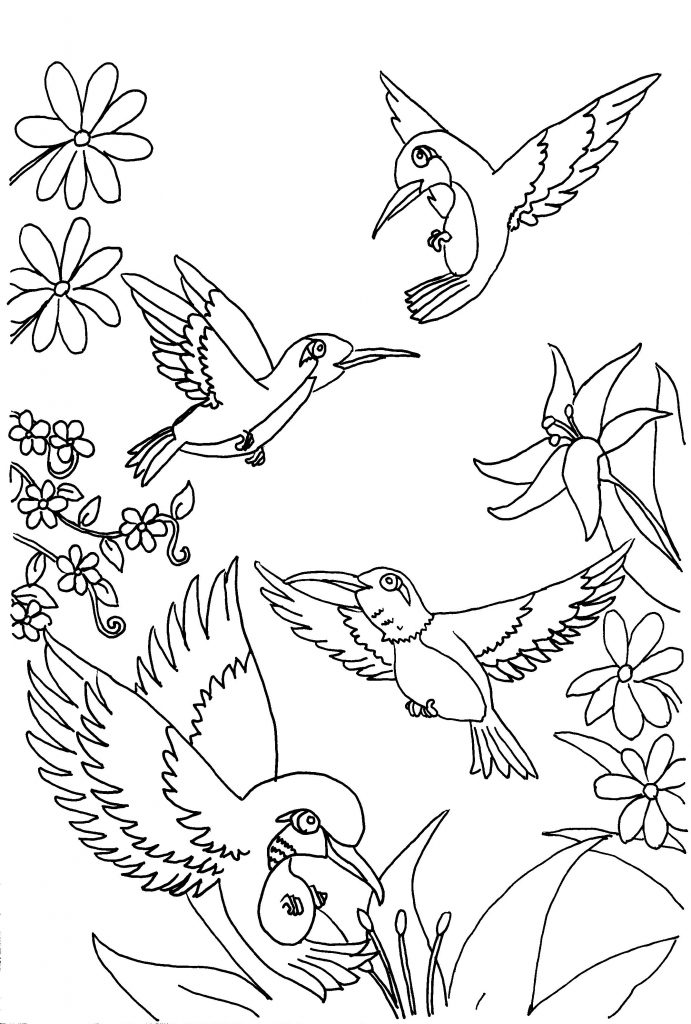 coloring pages hummingbirds flowers hummingbird printable coloring pages digital download of pages coloring flowers hummingbirds