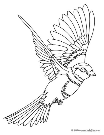 coloring pages of birds flying flying bird coloring pages getcoloringpagescom coloring of pages flying birds