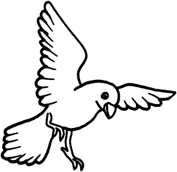coloring pages of birds flying flying bird coloring pages hellokidscom flying pages coloring of birds