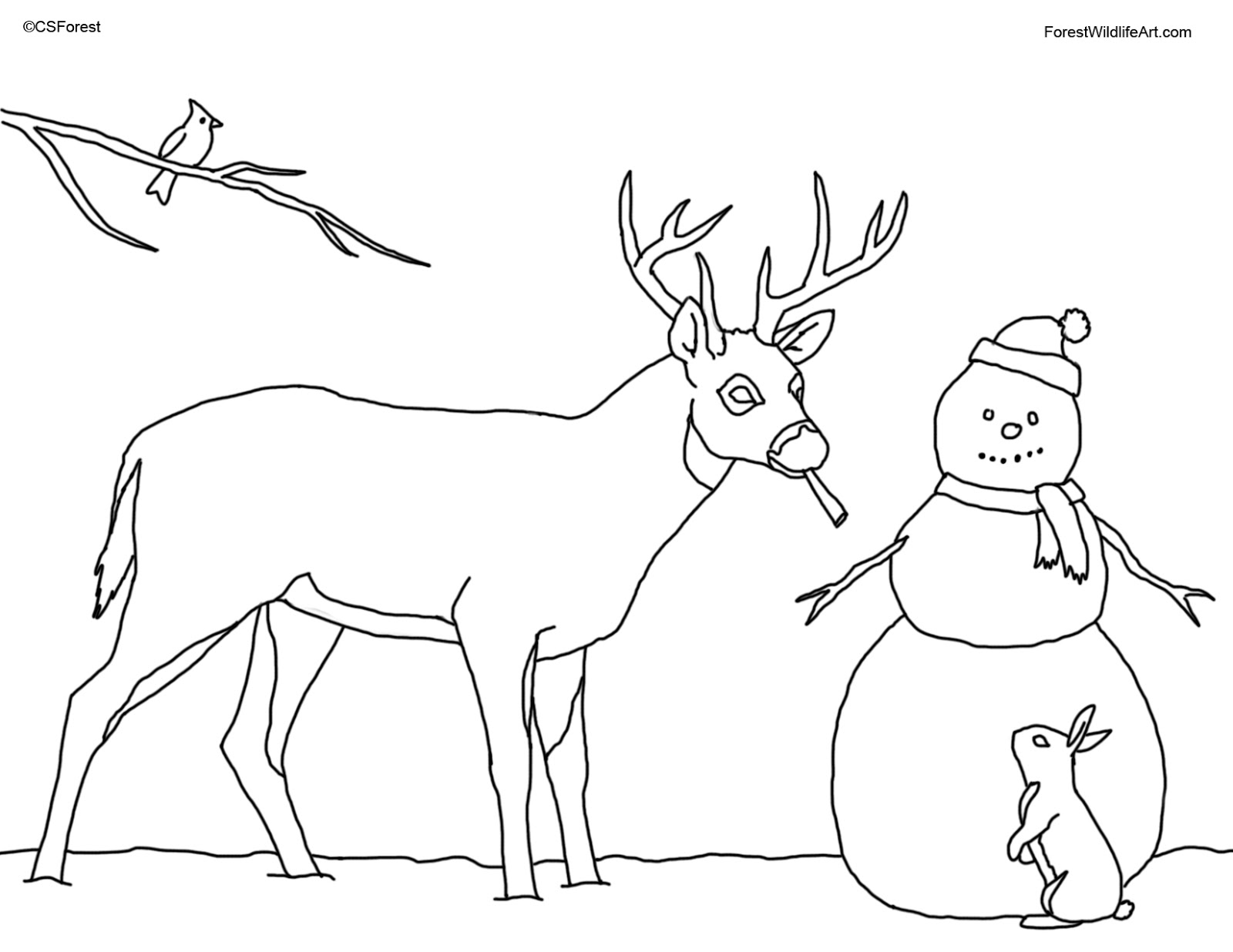 coloring pages of deer crista forest39s animals art coloring book page for kids of coloring deer pages