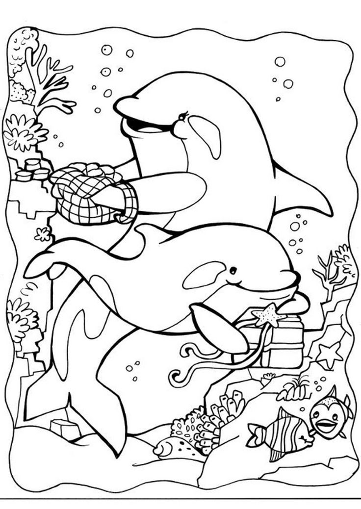 coloring pages of dolphins 59 best images about thema dolfijnen kleuters dolphin pages of coloring dolphins