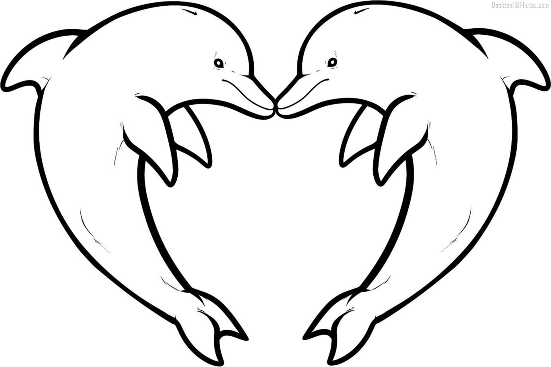 coloring pages of dolphins dolphin coloring pages download and print for free of pages dolphins coloring