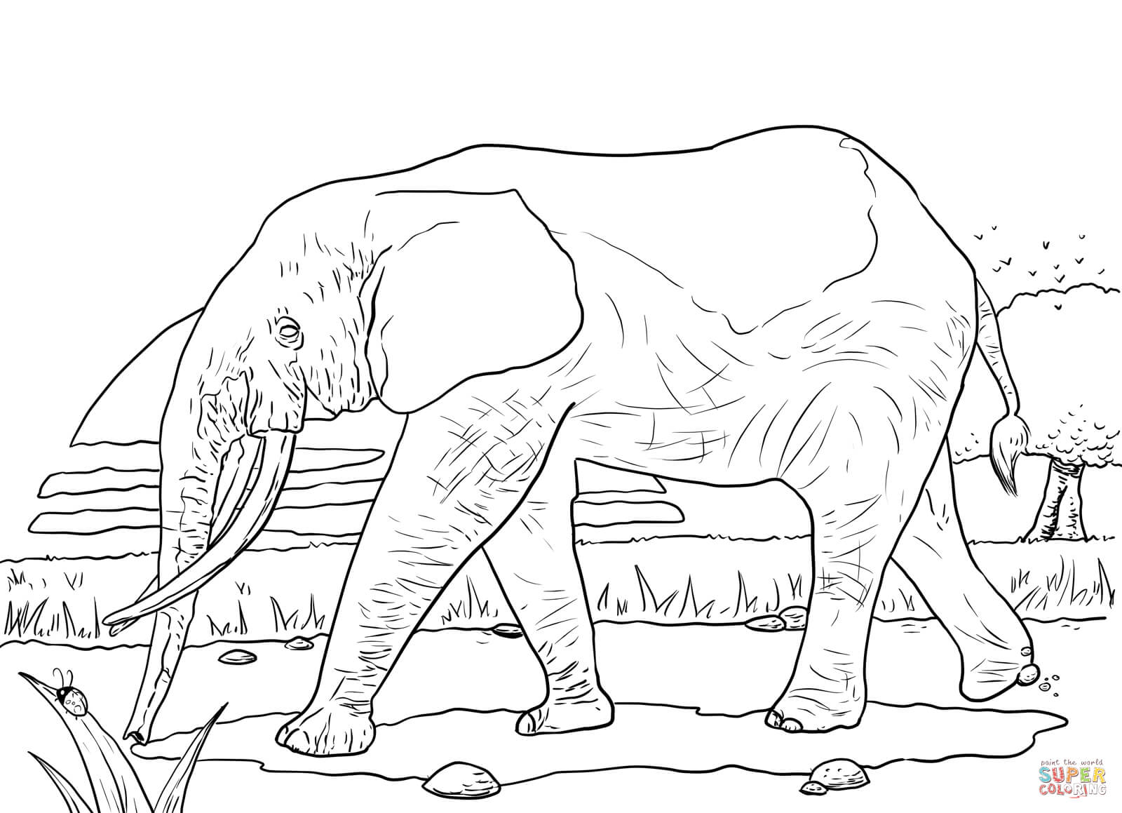 coloring pages of grassland animals coloring pages that say savannah coloring pages of animals pages grassland coloring