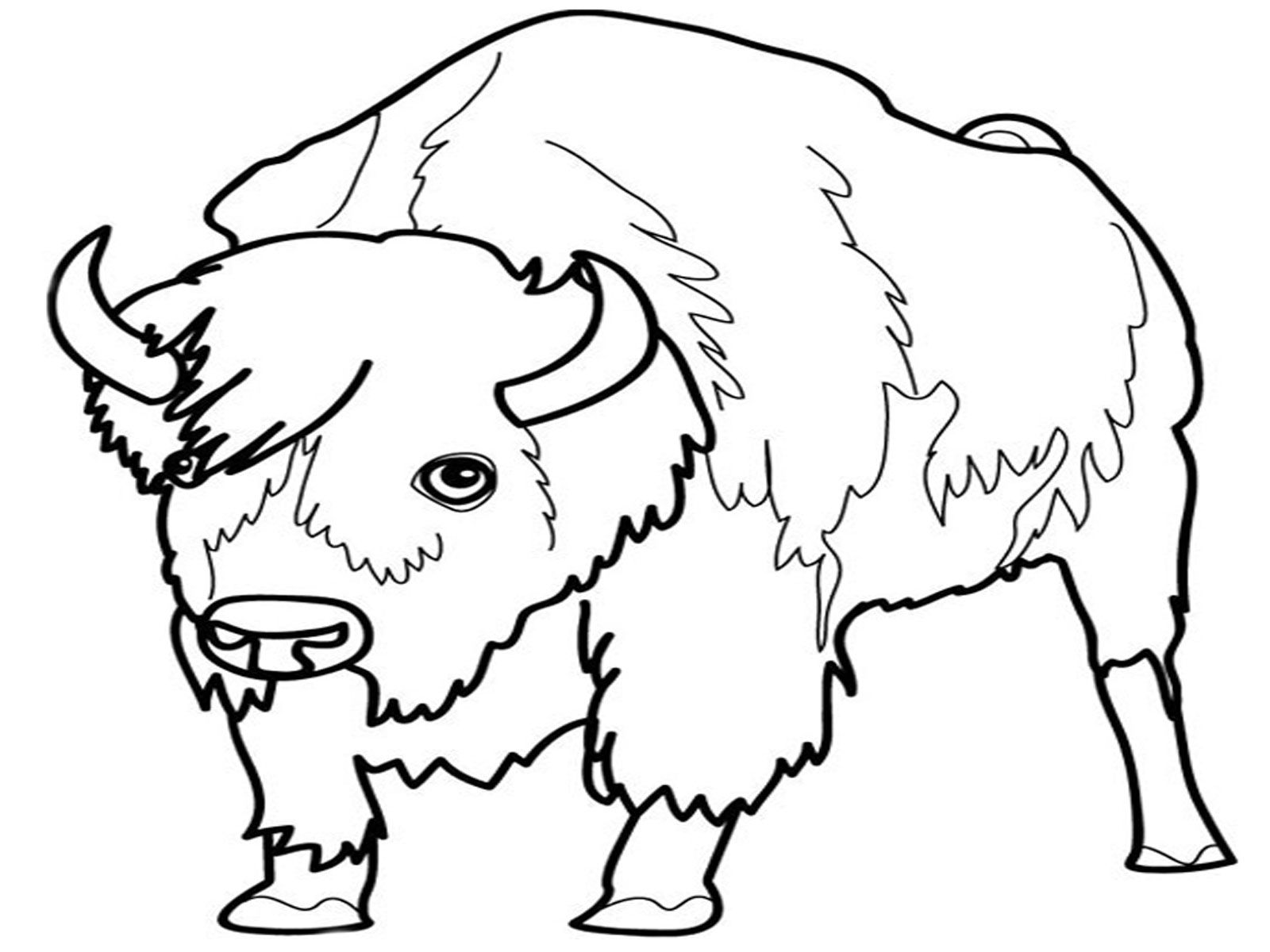 coloring pages of grassland animals grassland coloring pages coloring home coloring grassland of pages animals