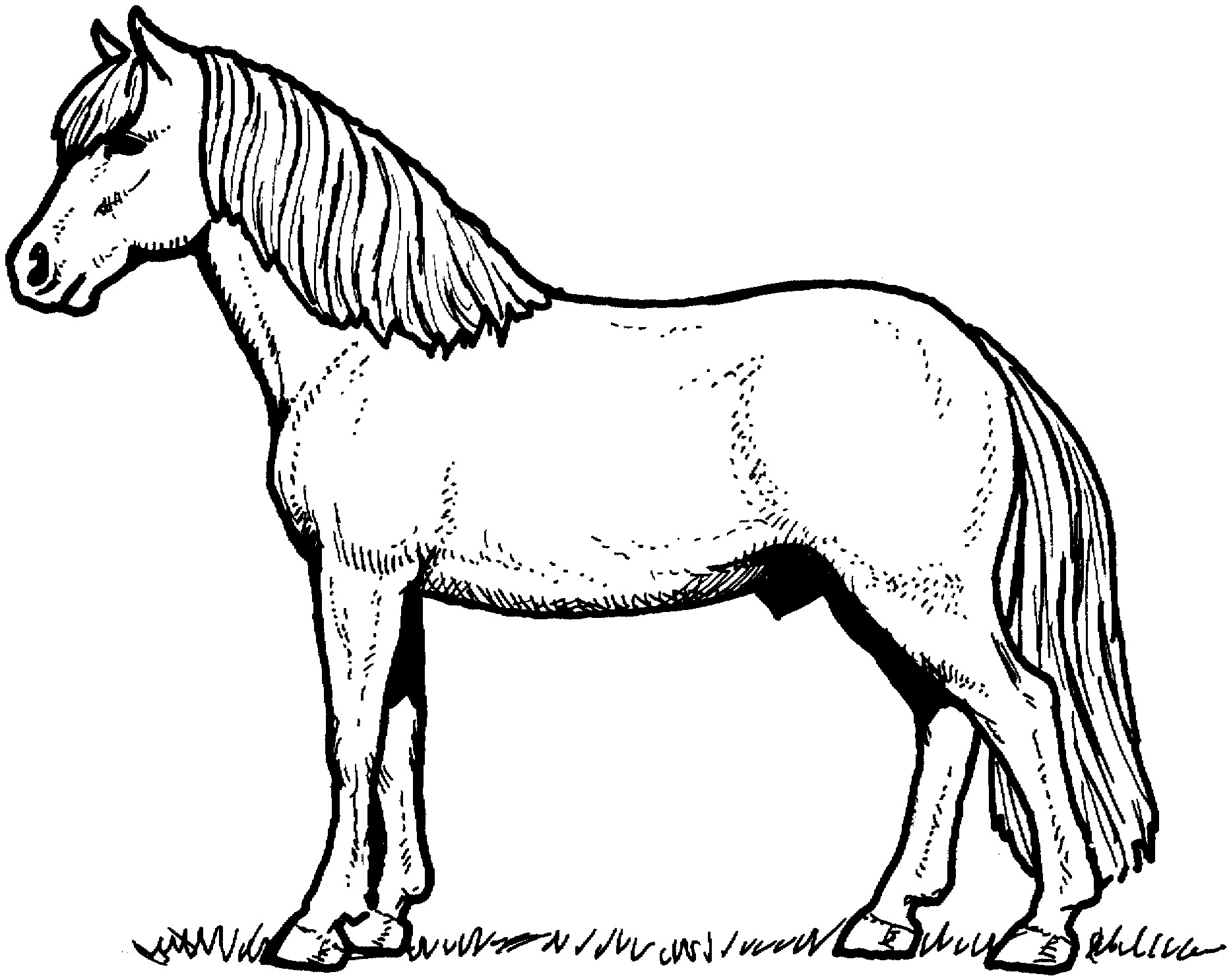 coloring pages of horses to print horse coloring pages only coloring pages print to horses coloring of pages
