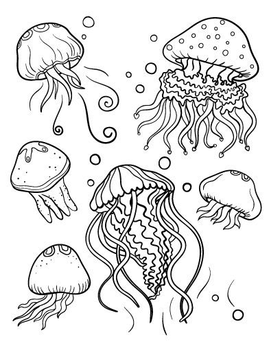 coloring pages of jellyfish 39 best coloring pages images on pinterest doodles pages jellyfish of coloring