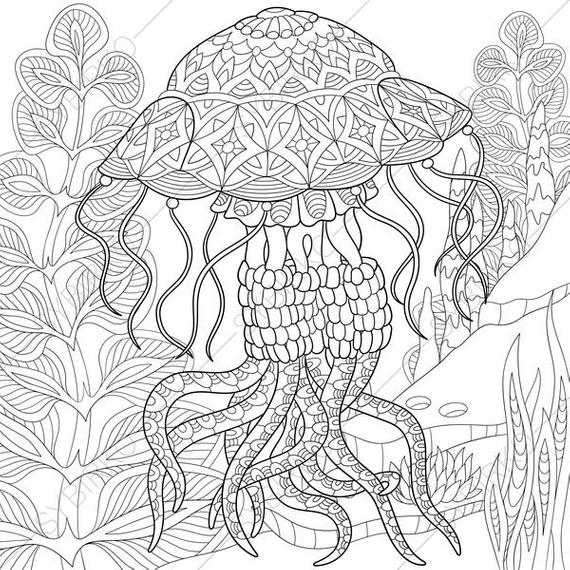 coloring pages of jellyfish top 35 free printable ocean coloring pages for kids jellyfish coloring of pages