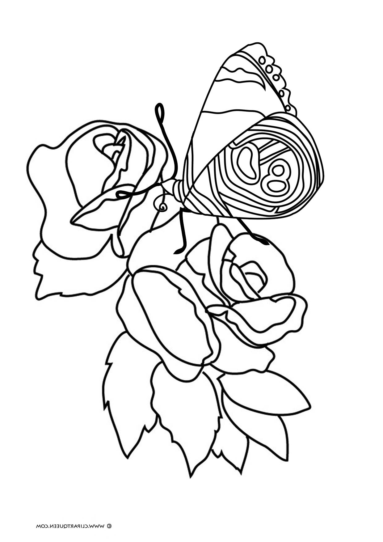 coloring pages of roses and butterflies butterfly coloring pages coloring pages roses of and butterflies