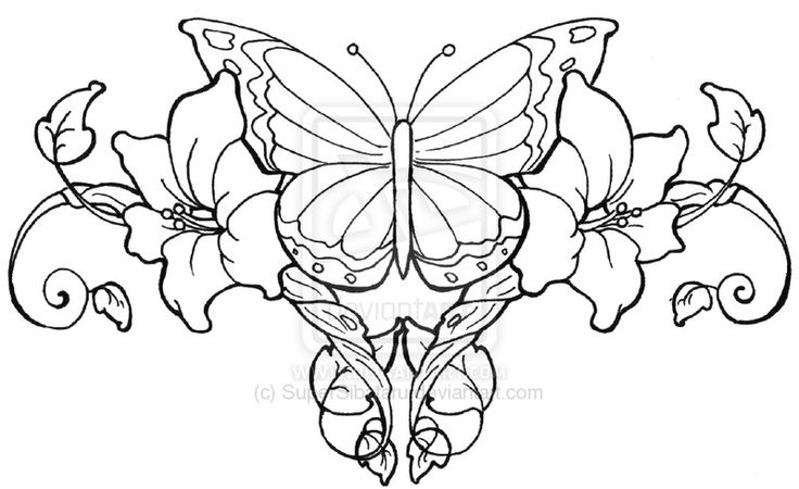 coloring pages of roses and butterflies flower coloring pages coloring pages and coloring on butterflies roses pages of and coloring