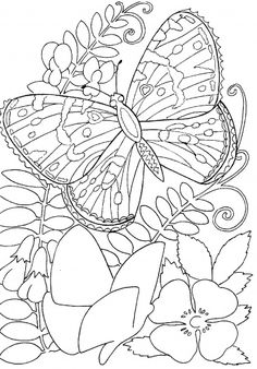 coloring pages of roses and butterflies free butterfly coloring pages butterfly on roses coloring and pages butterflies roses of