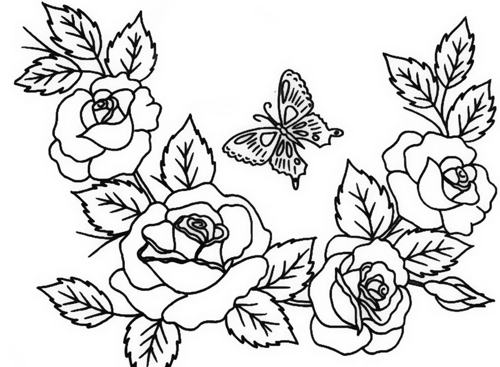 coloring pages of roses and butterflies rose butterfly coloring page mcoloring pages coloring roses butterflies and of