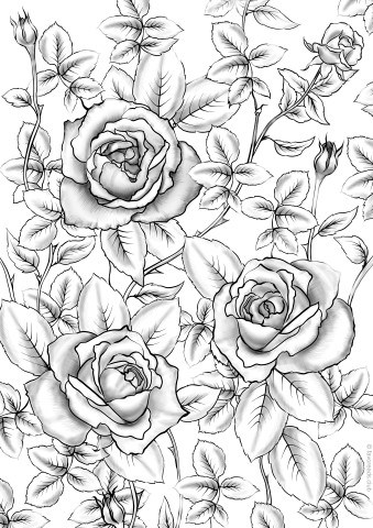 coloring pages of roses and butterflies roses printable adult coloring pages from favoreads of butterflies pages coloring and roses