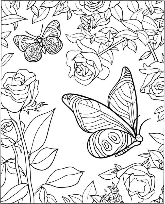 coloring pages of roses and butterflies welcome to dover publications pages roses of butterflies coloring and