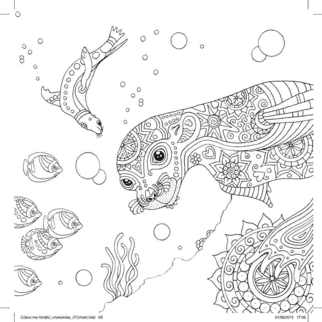 coloring pages of seals leopard seal coloring pages at getcoloringscom free pages coloring seals of