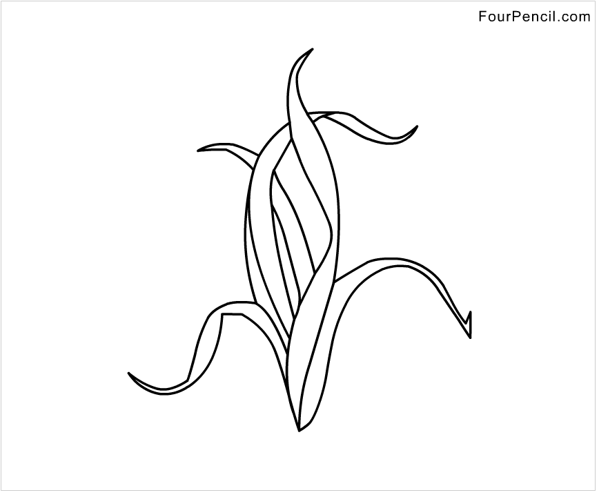 coloring pages of seaweed cartoon seaweed stock vector illustration 171318791 of coloring seaweed pages