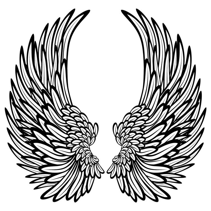 coloring pages of wings printable angel wings clipartsco pages coloring wings of
