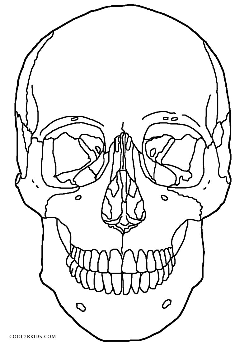 coloring pages skull printable skulls coloring pages for kids cool2bkids skull coloring pages 1 1