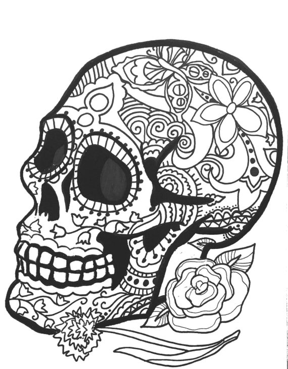 coloring pages skull skull feathers printable coloring page art by tarren skull pages coloring