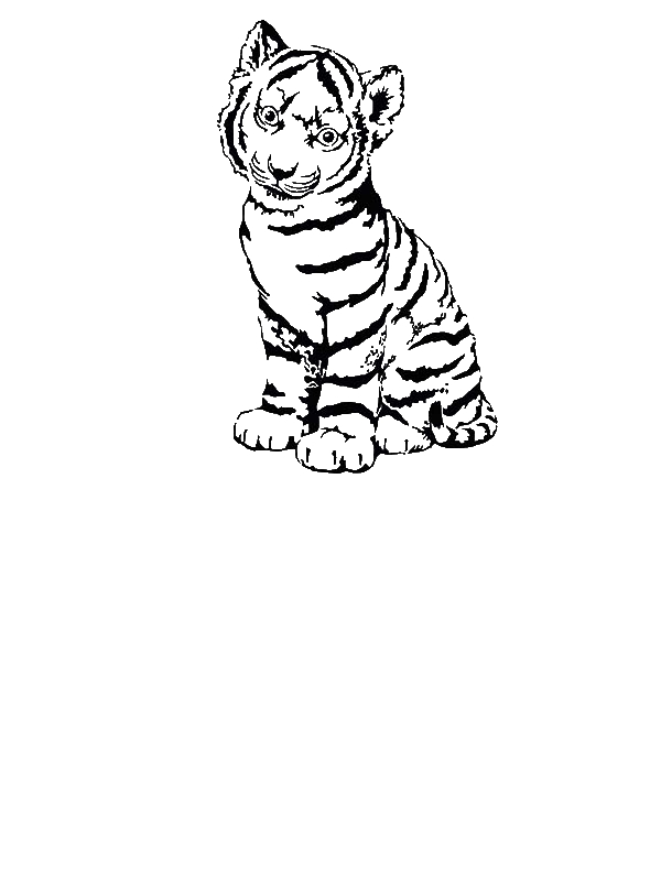 coloring pages tiger cubs cute tiger cub coloring page woo jr kids activities cubs coloring tiger pages