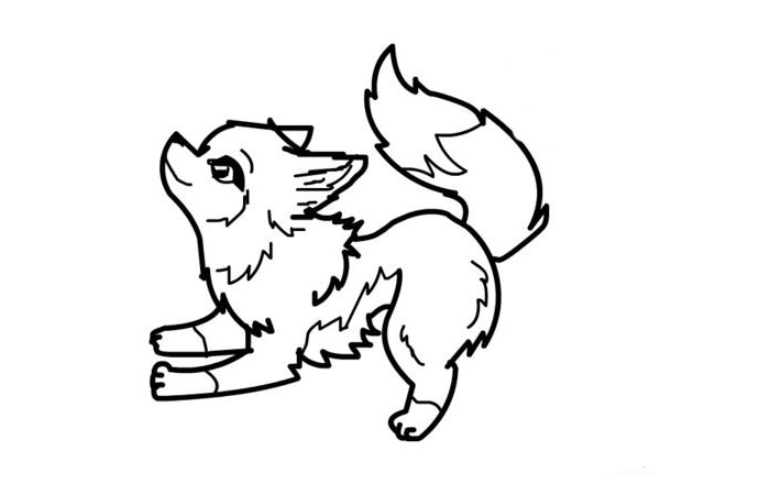 coloring pages wolf wolf template animal templates free premium templates coloring pages wolf