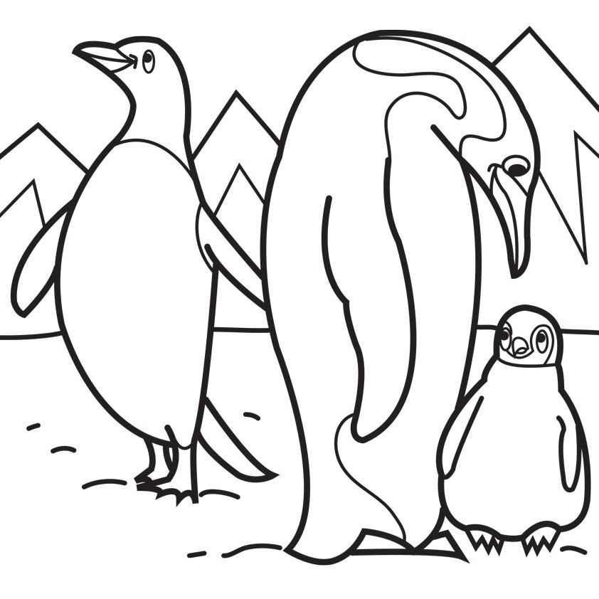 coloring penguin penguin coloring pages clipart panda free clipart images coloring penguin