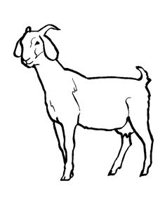 coloring picture of a goat till all have heard may 2011 coloring goat of a picture